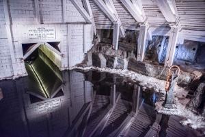 Auschwitz-Birkenau & Wieliczka Salt Mine: Day Tour & Lunch