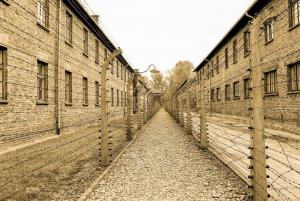 Auschwitz-Birkenau & Wieliczka Salt Mine Tour