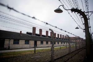 Auschwitz Museum and Wieliczka Salt Mine 1-Day Private Tour