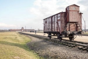 Auschwitz Ticket and Full-Day Tour from Krakow