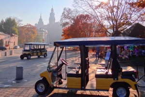 City Tour by Electric Golf Cart