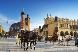 Cultural Capital of Poland Day Trip from Warsaw
