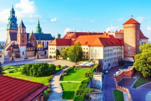 Daily Wawel Cathedral Guided Tour with Admission