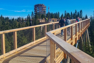 Dunajec River Gorge Rafting and Tree Top Walk from Krakow
