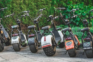 Electric Scooter Tour of the City