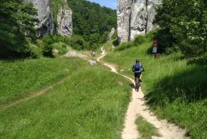 From 8-Hour Mountain Biking Tour