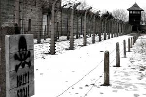 From Auschwitz-Birkenau and Wieliczka Salt Mine Tour