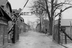 From Auschwitz-Birkenau Group Tour by Minivan
