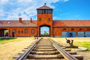 From Auschwitz-Birkenau Live Guided Tour