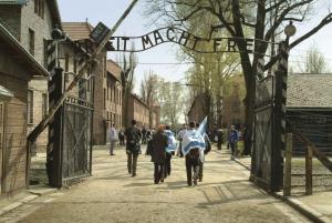 From Auschwitz-Birkenau Memorial and Museum Tour