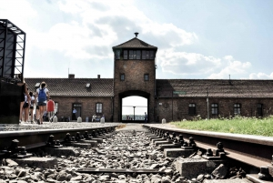 From Auschwitz-Birkenau Museum & Camp Guided Tour