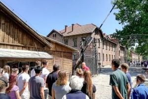 From Auschwitz-Birkenau Museum Guided Tour