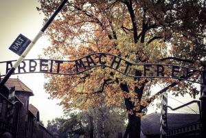 From Auschwitz-Birkenau Roundtrip Bus & Entry Ticket