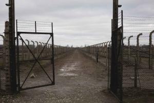 From Auschwitz-Birkenau Transfer
