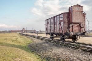 From Auschwitz II-Birkenau Tour with Transportation