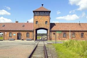 From Auschwitz & Wieliczka Salt Mine Guided Tour