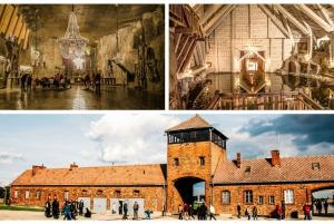 From Auschwitz, Wieliczka Salt Mine & Pickup Options