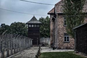 From Guided Auschwitz-Birkenau Tour