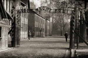 From Katowice: Auschwitz Tour with Private Transportation