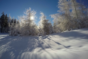 From Krakow: 3-Hour Skiing Experience Suitable for Beginners