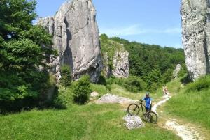 From Krakow: 8-Hour Mountain Biking Tour
