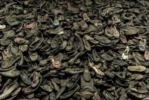 From Krakow: Auschwitz-Birkenau and Wieliczka Salt Mine