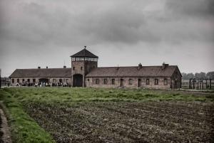From Krakow: Auschwitz Birkenau Entrance & Transfer