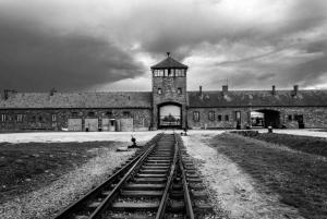From Krakow: Auschwitz-Birkenau Group Tour by Minivan