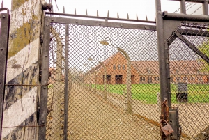 From Krakow: Auschwitz Birkenau Guided Tour with Pick-up