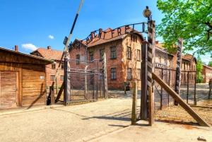 From Krakow: Auschwitz-Birkenau Live Guided Tour