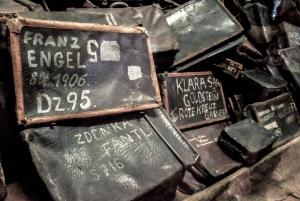 From Krakow: Auschwitz-Birkenau Museum & Camp Guided Tour