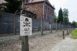From Krakow: Auschwitz-Birkenau Roundtrip Bus & Entry Ticket