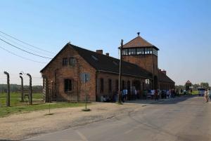 From Krakow: Auschwitz-Birkenau Tour with Private Transport