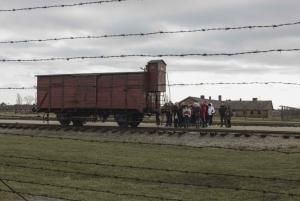 From Krakow: Auschwitz-Birkenau Transfer