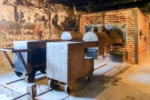 From Krakow: Auschwitz-Birkenau Visit and Transportation
