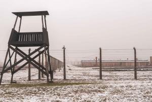 From Krakow: Auschwitz II-Birkenau Tour with Transportation