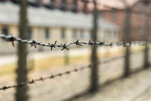 From Krakow: Auschwitz & Salt Mine Tour w/ Personal Driver