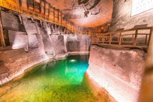 From Krakow: Auschwitz & Wieliczka Salt Mine Guided Tour