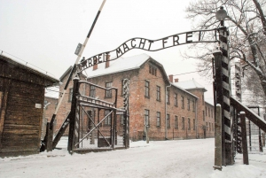From Krakow: Auschwitz, Wieliczka Salt Mine & Pickup Options