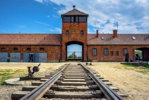 From Krakow: Guided Tour Auschwitz-Birkenau with Pickup