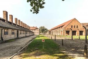 From Krakow: Private Transfer to Auschwitz-Birkenau