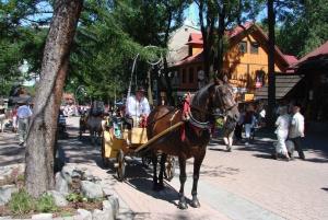 From Krakow: Slovakia Treetop Walk, Zakopane & Thermal Spa