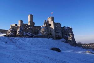 From Krakow: 'The Witcher' Ogrodzieniec Castle Private Trip