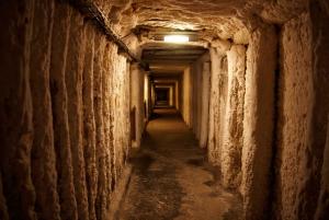 From Kraków: Wieliczka Salt Mine Trip
