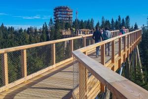 From Slovakia Treetop Walk, Zakopane & Thermal Spa