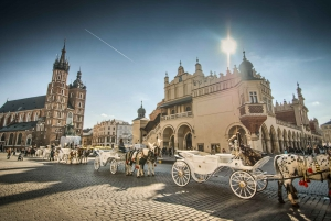 From Warsaw: Krakow Sightseeing Tour by Express Train