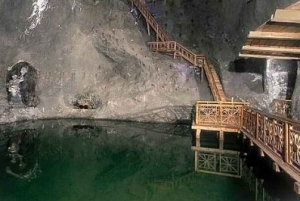 From Wieliczka Salt Mine 5-Hour Private Tour