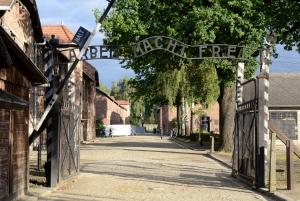 Full-Day Auschwitz-Birkenau Sightseeing Tour