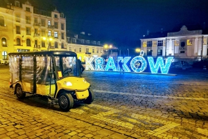 Guided Sightseeing Tour in an Electric Car