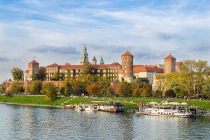 Katowice: Private Tour to Krakow with Transport and Guide